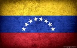 Flag of venezuela preview