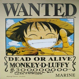 Luffy Wanted Poster preview