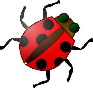 Ladybug Spray