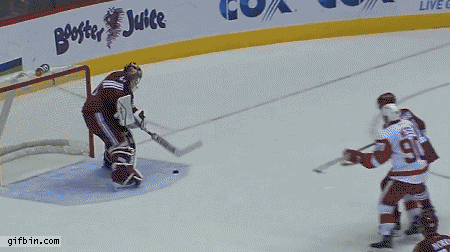 Mike Smith's goal
