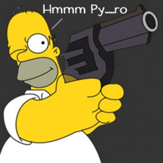 Homer_pyro