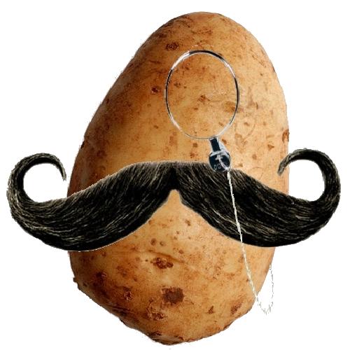 Fancy Potato