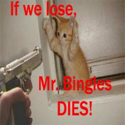 bingles preview