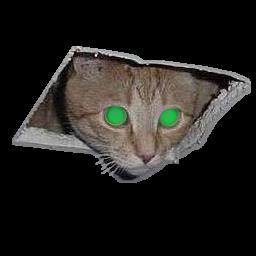ceiling cat gamebanana sprays
