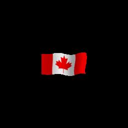 Animated Canadian Flag Spray