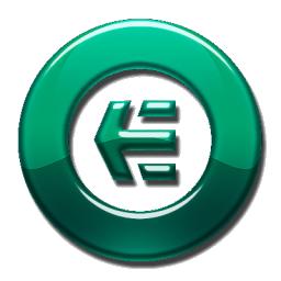 Shiny Green Etnies Logo