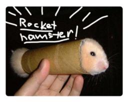 Rocket hamster!