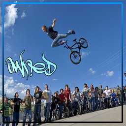 BMXER Owned
