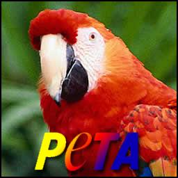 PETA Parrot spray