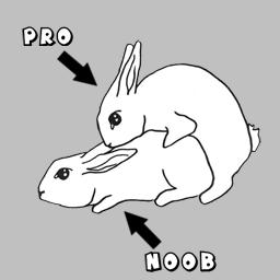 Pro & Noob