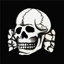SS-Totenkopf skull Spray preview