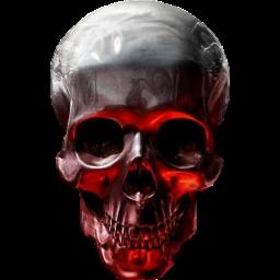 The Cursed Skull