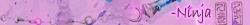 Ninja's have Flyhax. avatar