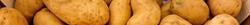 a.k.a RusGG avatar