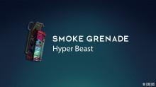 CS:GO - Smoke Grenade | Hyper Beast