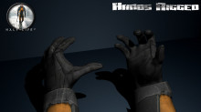 Half Life 2 - Hands Rigged