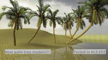 Palm tree models