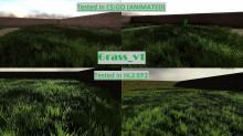 DomiTibingen's Grass_v1