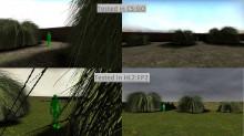 Pampas_Grass_01