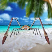 Japan Giant Spider Crab Model preview