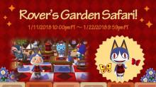 Rover and Garden Activities