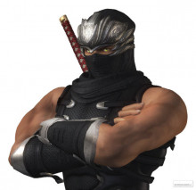 Request for Ninja Gaiden characters