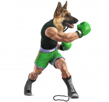 Little Mac with a German Shepard Head