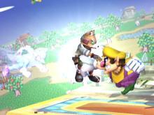 PM Wario F-Smash, Bair and D-Smash