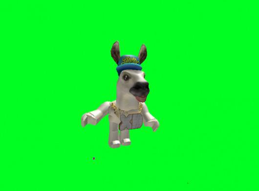 Steve the Llama