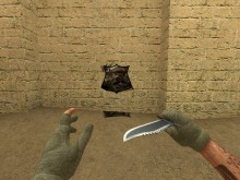 COD 4 Spray screenshot #2