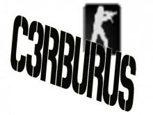 C3RBERUS's Bots