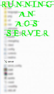 Running an AoS server.