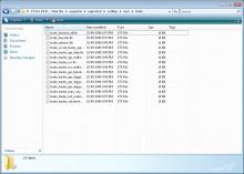 Edit Trader Files