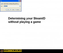 Getting Steam ID out of game