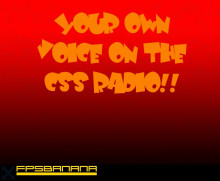 How to get your own voice in css radio