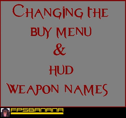 Changing Gun Names