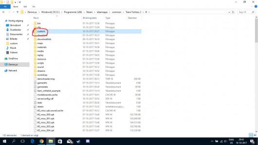 Custom Folder