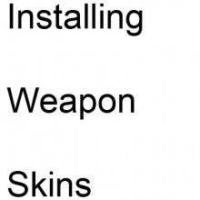 Installing weapon skins Tutorial screenshot #1