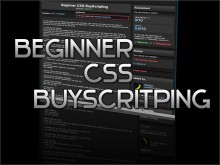 Beginner CSS BuyScripting Tutorial preview