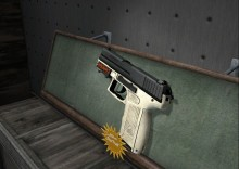 P2000 StatTrak Ivory preview