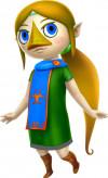 Hyrule Warriors based Link
