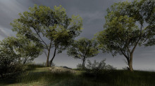 Trees for source engine