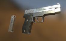SAM61's SIG 220