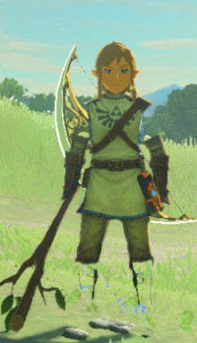 Trainee Link (Hyrule Warriors)