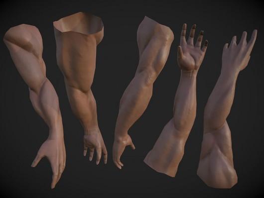 Muscular Arm | GameBanana Works In Progress
