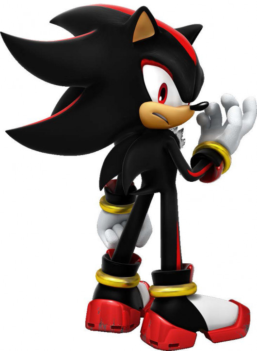 A Picture of Shadow