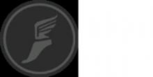 Scout Emblem Health GUI preview