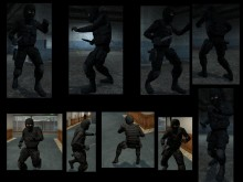 Tactical Team Skin preview