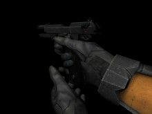 HL2 M9 Animation Skin preview