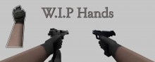 P99 and Desert Eagle with Ranger like hands :P Skin preview